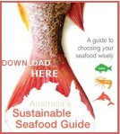 Download Seafood Mini-guide